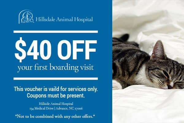 $40 off first boarding visit coupon - cat